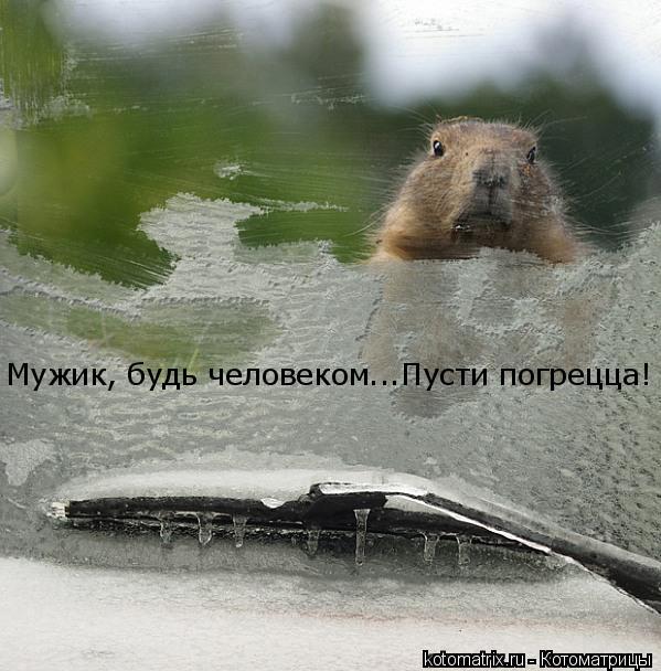 http://kotomatrix.ru/images/lolz/2008/02/18/g.jpg