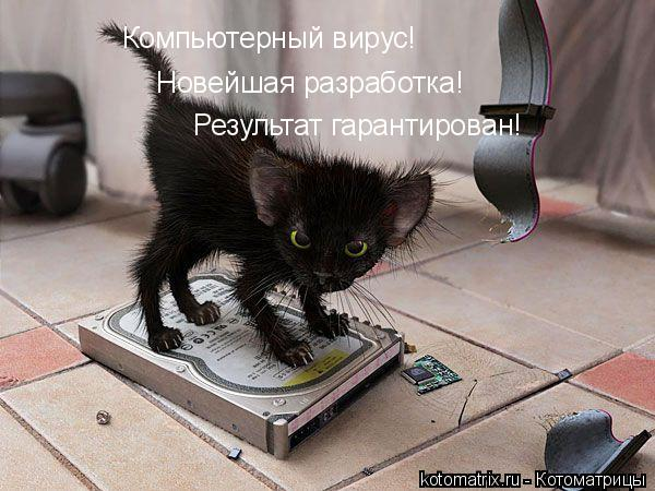 http://kotomatrix.ru/images/lolz/2008/02/26/i.jpg