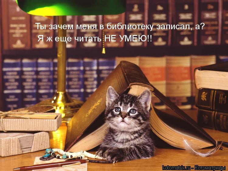 Котоматрица: Ты зачем меня в библиотеку записал, а? Я ж еще читать НЕ УМЕЮ!!