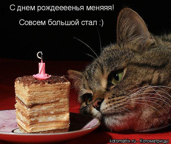 День рождения - грустный праздник ...: liveinternet.ru/users/3152487/post102005721