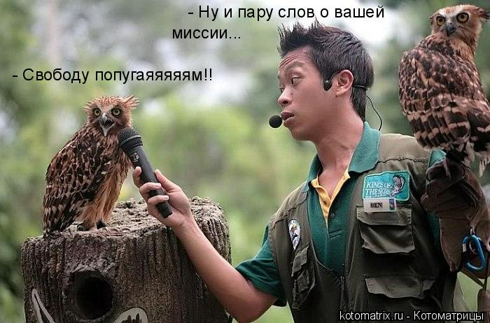 http://kotomatrix.ru/images/lolz/2008/03/16/_x.jpg