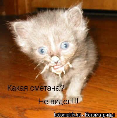http://kotomatrix.ru/images/lolz/2008/03/20/O.jpg