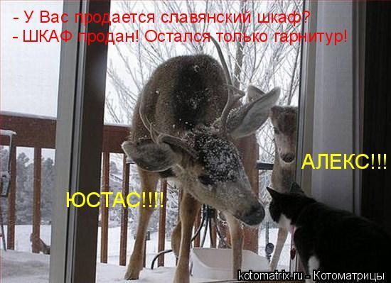 Котоматрица: У Вас продается славянский шкаф? -ШКАФ продан! Остался только
