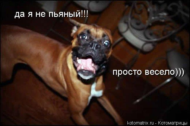 http://kotomatrix.ru/images/lolz/2008/04/18/SS.jpg
