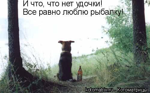 http://kotomatrix.ru/images/lolz/2008/04/18/tX.jpg