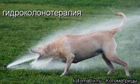 http://kotomatrix.ru/images/lolz/2008/05/03/-P.jpg
