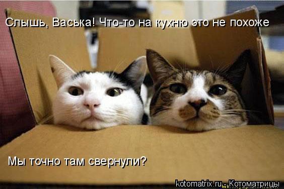 http://kotomatrix.ru/images/lolz/2008/05/04/IR.jpg
