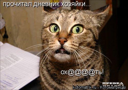 Котоматрица: Прочитал дневник хозяйки...Ох@@@еть!