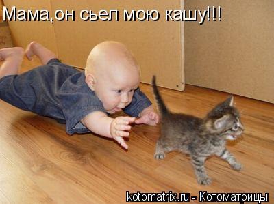 Котоматрица: Мама,он сьел мою кашу!!!