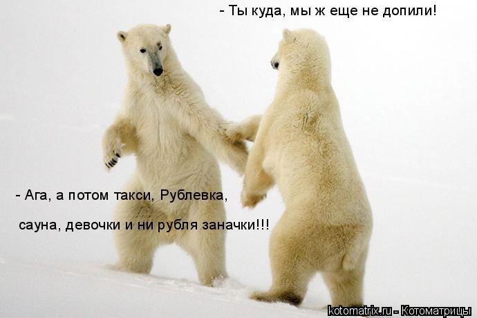 Котоматрица: - Ты куда, мы ж еще не допили! - Ага, а потом такси, Рублевка, сауна, девочки и ни рубля заначки!!!