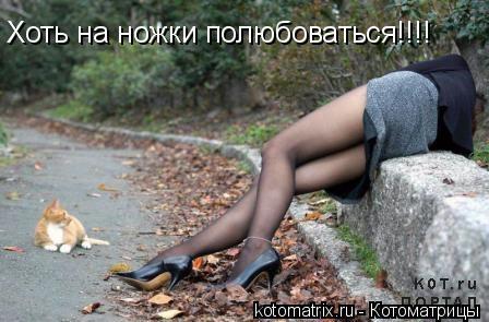 Котоматрица: Хоть на ножки полюбоваться!!!!