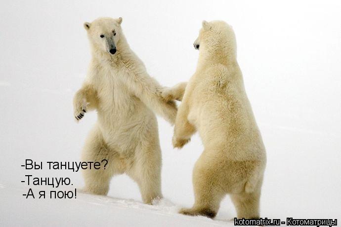 Котоматрица: -Вы танцуете? -Танцую. -А я пою!