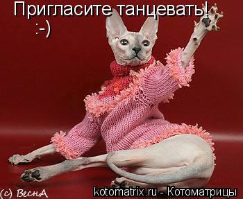 Котоматрица: Пригласите танцевать! :-)