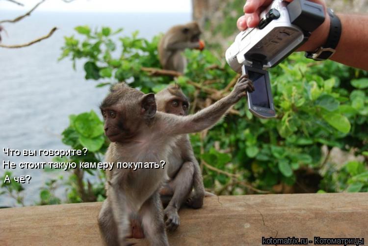 Котоматрица: Что вы говорите?  Не стоит такую камеру покупать? А чё?