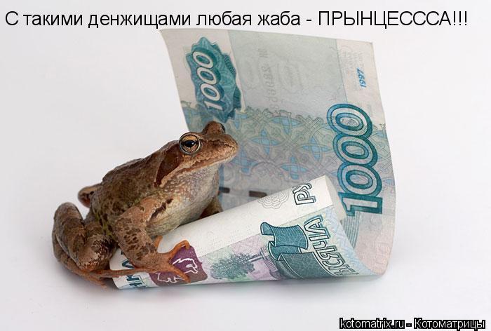 Котоматрица: С такими денжищами любая жаба - ПРЫНЦЕСССА!!!