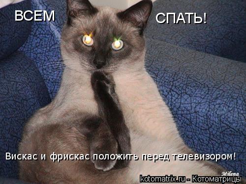 Котоматрица: ВСЕМ СПАТЬ! Вискас и фрискас положить перед телевизором!