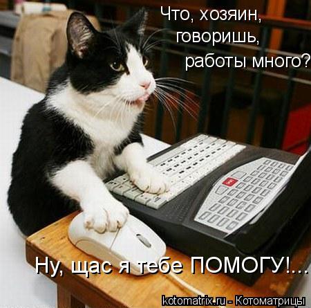 Котоматрица: Ну, щас я тебе ПОМОГУ!... говоришь,  работы много? Что, хозяин,