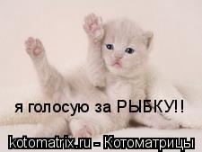 Котоматрица: я голосую за РЫБКУ!!