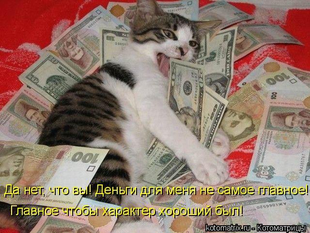 Котоматрица: Да нет, что вы! Деньги для меня не самое главное!   Главное чтобы характер хороший был!