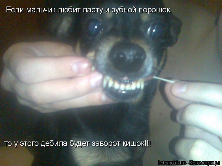 Котоматрица: Если мальчик любит пасту и зубной порошок, то у этого дебила будет заворот кишок!!!