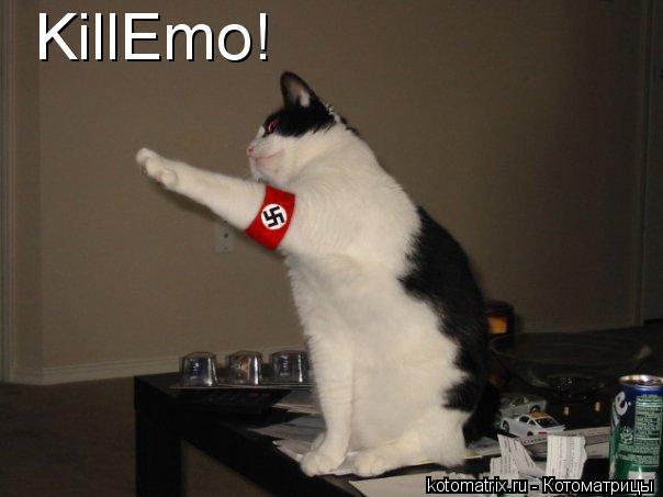 Котоматрица: KillEmo!