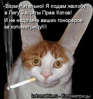 Котоматрица: -Возмутительно! Я подам жалобу в Лигу Защиты Прав Котов! И не надо мне ваших гонораров за котоматрицу!!!