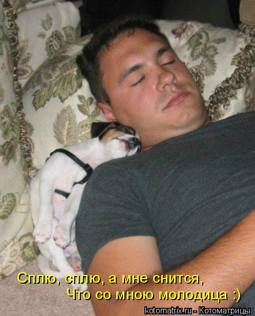 Котоматрица: Что со мною молодица :) Сплю, сплю, а мне снится,