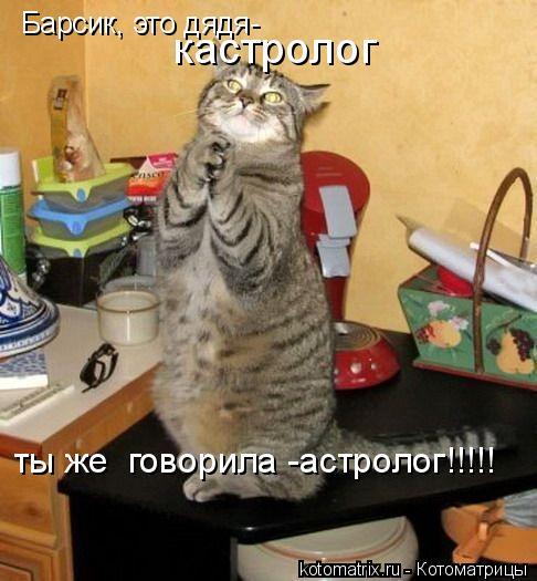 Котоматрица: Барсик, это дядя- кастролог ты же  говорила -астролог!!!!!