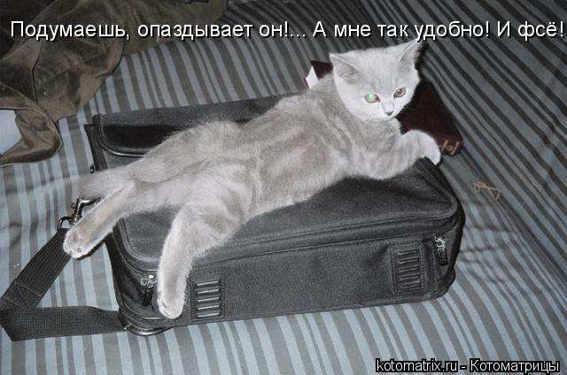 Котоматрица: Подумаешь, опаздывает он!... А мне так удобно! И фсё!