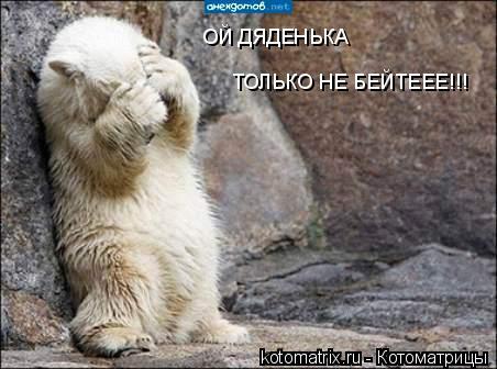 Котоматрица: ОЙ ДЯДЕНЬКА  ТОЛЬКО НЕ БЕЙТЕЕЕ!!!