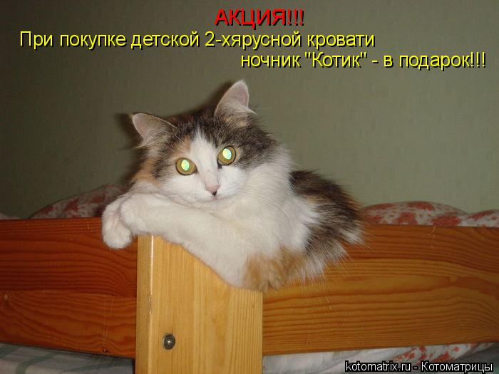 """Котоматрица: АКЦИЯ!!! При покупке детской 2-хярусной кровати  ночник """"Котик"""" - в подарок!!!"""