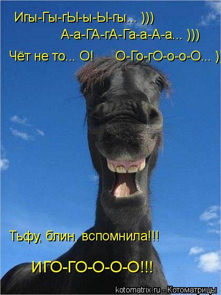 Котоматрица: Игы-Гы-гЫ-ы-Ы-гы... ))) А-а-ГА-гА-Га-а-А-а... ))) Чёт не то... О!      О-Го-гО-о-о-О... )))))) Тьфу, блин, вспомнила!!!      ИГО-ГО-О-О-О!!!