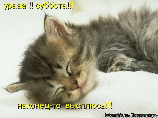 Котоматрица: урааа!!! суббота!!! наконец-то  высплюсь!!!