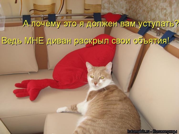 Котоматрица: А почему это я должен вам уступать?  Ведь МНЕ диван раскрыл свои объятия!