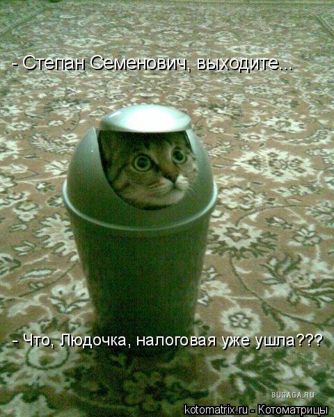 Котоматрица: - Степан Семенович, выходите... - Что, Людочка, налоговая уже ушла???