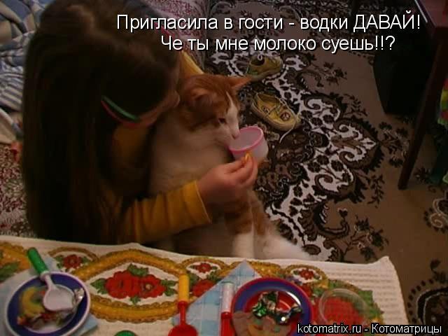 Котоматрица: Пригласила в гости - водки ДАВАЙ! Че ты мне молоко суешь!!?