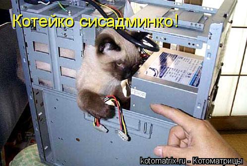 Котоматрица: Котейко сисадминко!