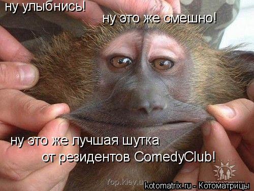 Котоматрица: ну это же смешно! ну улыбнись! ну это же лучшая шутка от резидентов ComedyClub!