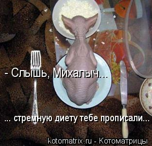 Котоматрица: - Слышь, Михалыч... ... стремную диету тебе прописали...