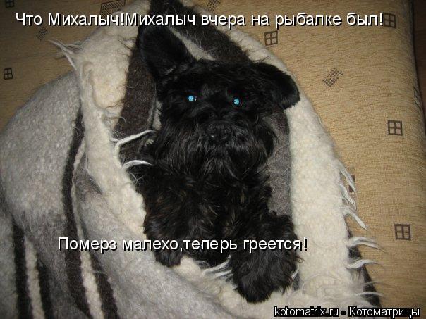 Котоматрица: Что Михалыч!Михалыч вчера на рыбалке был! Померз малехо,теперь греется!