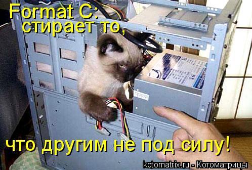 Котоматрица: Format C:  стирает то,  что другим не под силу!