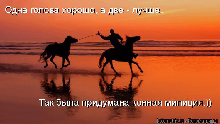 Котоматрица: Одна голова хорошо, а две - лучше.  Так была придумана конная милиция.))
