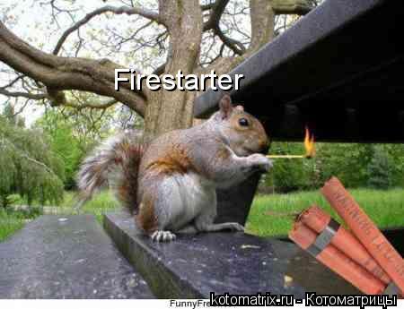Котоматрица: Firestarter