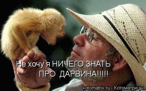 Котоматрица: Не хочу я НИЧЕГО ЗНАТЬ ПРО  ДАРВИНА!!!!!