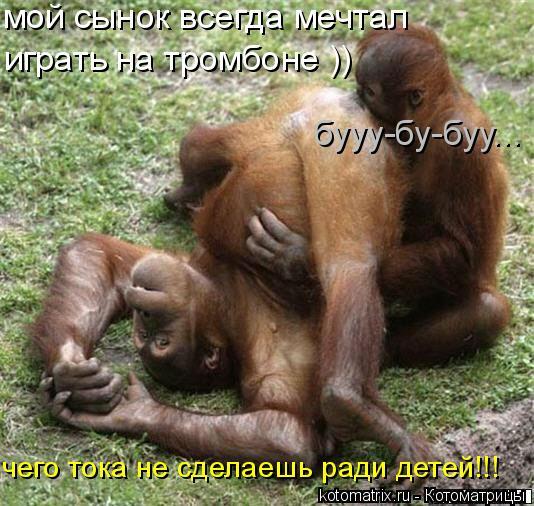 Котоматрица: мой сынок всегда мечтал играть на тромбоне )) бууу-бу-буу... чего тока не сделаешь ради детей!!!