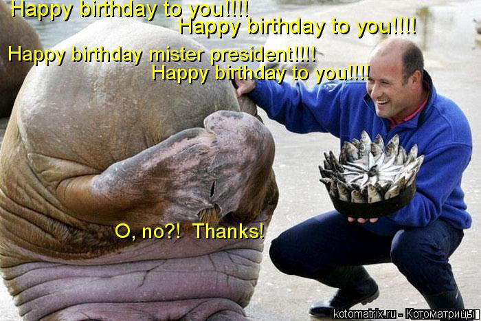 Котоматрица: Happy birthday to you!!!! Happy birthday to you!!!! Happy birthday mister president!!!! Happy birthday to you!!!!  O, no?!  Thanks!