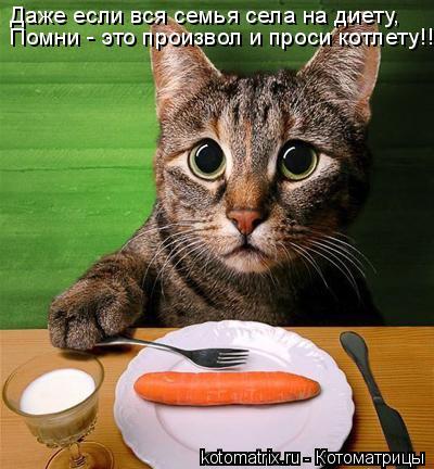 Котоматрица: Даже если вся семья села на диету, Помни - это произвол и проси котлету!!!