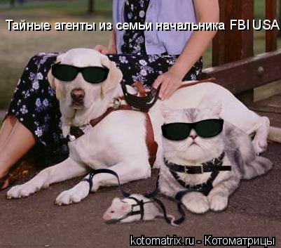 Котоматрица: Тайные агенты из семьи начальника FBI USA......