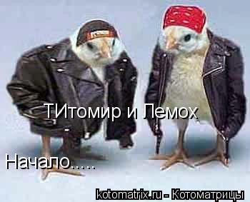 Котоматрица: ТИтомир и Лемох Начало.....