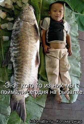 Котоматрица: -Э-э.. кого то из них мы поймали сегодня на рыбалке.